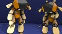 Robots (Rajesh Pai)
